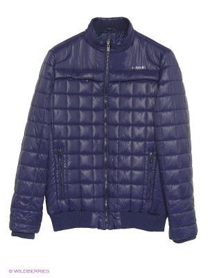 Куртка U.S. Polo Assn.. Цвет: фиолетовый