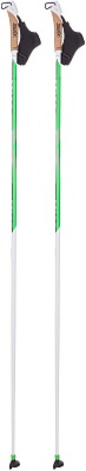 Палки для беговых лыж  Team TBS Swix