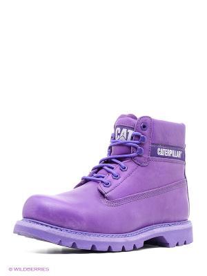 Ботинки Caterpillar. Цвет: фиолетовый