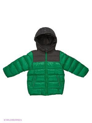 Куртка для мальчика Медвежья лапа Пралеска. Цвет: синий