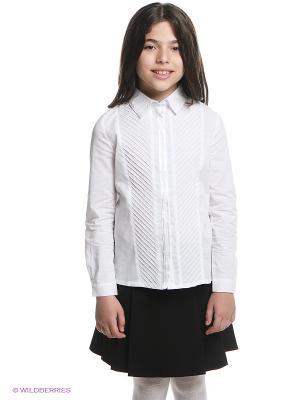 Блузка PELICAN. Цвет: белый