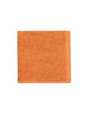 Набор из 4х махровых полотенец оранжевый - 40*40, УзТ-НПБ-100-27 Aisha. Цвет: оранжевый
