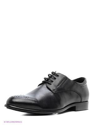 Туфли Vitacci. Цвет: черный