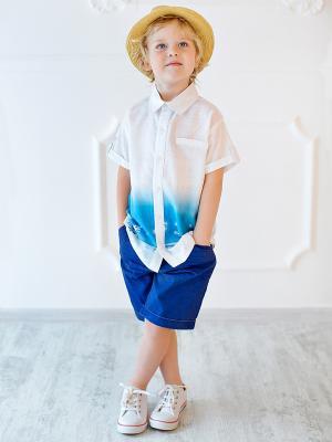 Шорты для мальчика Bossa Nova. Цвет: синий