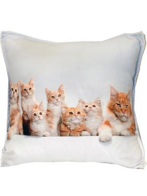 Наволочка декоративная, 45*45, серия Кошечки Dorothy's Home. Цвет: белый, бирюзовый, рыжий, серый