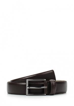 Ремень DKNY. Цвет: коричневый