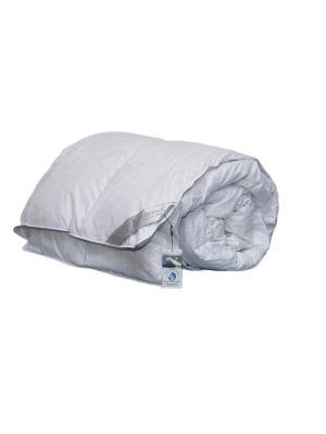 Одеяла, Натуральный Лебяжий Пух, 200х220см KAZANOV.A.. Цвет: белый