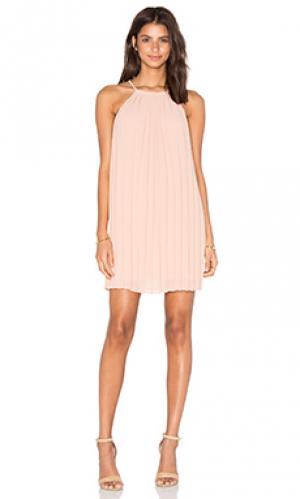 Платье с плиссированными кружевами сзади june Greylin. Цвет: румянец