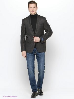 Пиджак мужской DOUGLAS. Цвет: серый