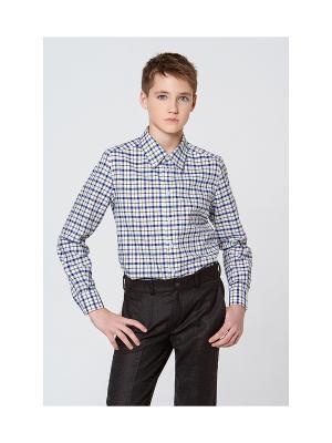 Рубашка MORU. Цвет: коричневый, синий