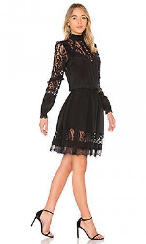 Мини платье vanilla RAVN. Цвет: черный