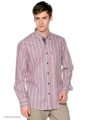 Рубашка Navigare. Цвет: темно-синий, красный, розовый, белый