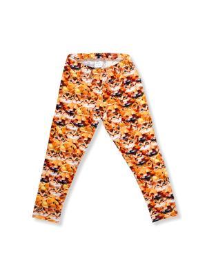 Леггинсы Fox & Cat Vikki-Nikki. Цвет: оранжевый