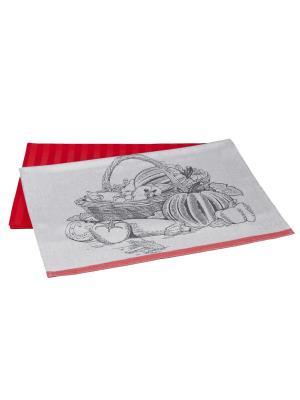 Кухонное полотенце в упаковке 50x70*2 HARVEST HOBBY HOME COLLECTION. Цвет: коралловый