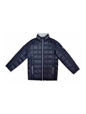 Куртка BORELLI. Цвет: темно-синий