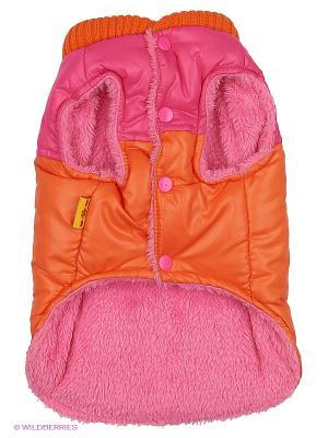 Куртка Lovabledog. Цвет: оранжевый