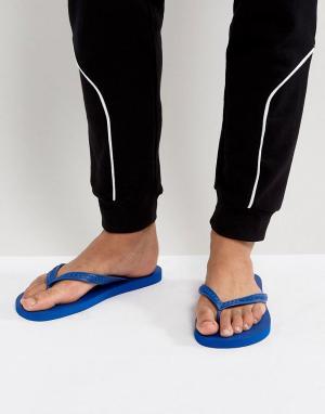 Versace Jeans Шлепанцы. Цвет: синий