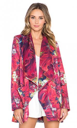 Пальто hayden Ringuet. Цвет: розовый