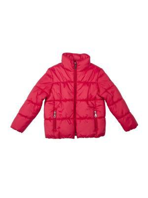 Куртка Button Blue. Цвет: красный