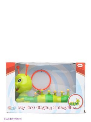 Каталка ксилофон Гусеница Toy Target. Цвет: салатовый
