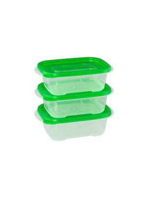 Набор из 3-х прямоугольных контейнеров XEONIC CO LTD. Цвет: зеленый, прозрачный