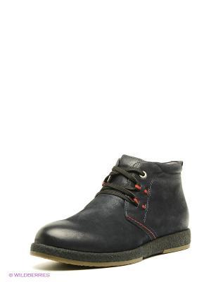 Ботинки El Tempo. Цвет: темно-синий