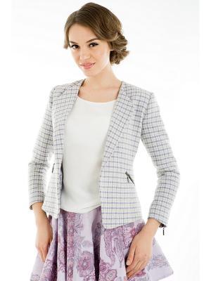 Пиджак Tsurpal. Цвет: серый