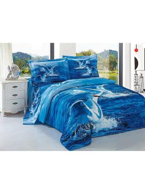 Комплект постельного белья Soft Line. Цвет: синий, голубой