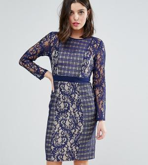 Little Mistress Petite Платье с длинными рукавами и контрастной кружевной отделкой Mis. Цвет: темно-синий