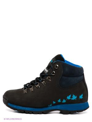 Ботинки Ascot. Цвет: синий