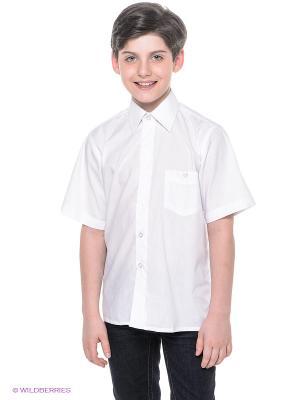 Рубашка Avanti Piccolo. Цвет: белый
