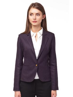 Пиджак VILATTE. Цвет: темно-фиолетовый