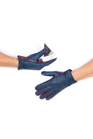 Перчатки Michel Katana. Цвет: фиолетовый