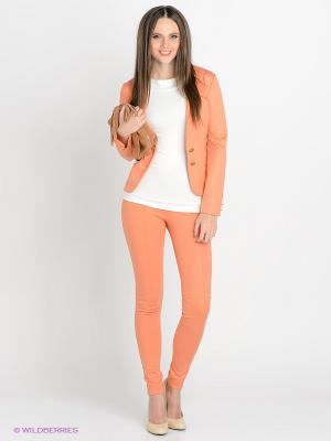 Леггинсы SUGARLIFE. Цвет: оранжевый