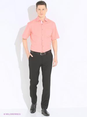 Рубашка Imperator. Цвет: коралловый