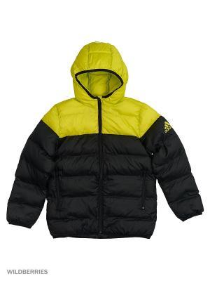 Куртка YB SD BTS JKT Adidas. Цвет: черный, желтый
