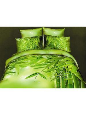 Постельное белье 2сп 70*70 Diva Afrodita. Цвет: зеленый