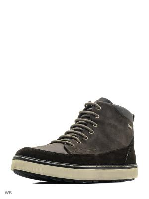 Ботинки GEOX. Цвет: коричневый, лиловый