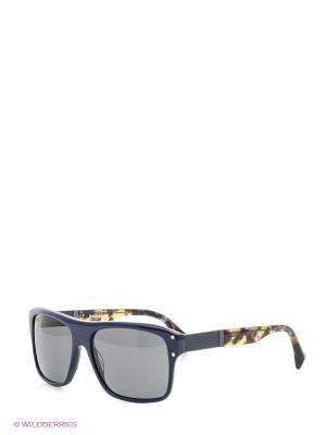 Очки солнцезащитные BLD 1522 101 Baldinini. Цвет: синий, коричневый
