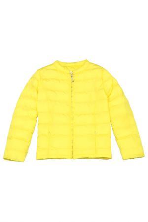 Куртка Vitacci. Цвет: лимонный