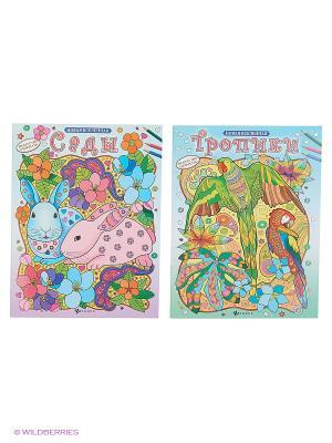 Релакс-раскраски: сады и тропики Феникс-Премьер. Цвет: голубой, розовый