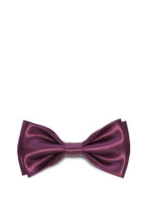 Бабочка Stefano Danotelli Дом Галстука. Цвет: темно-фиолетовый, фиолетовый, фуксия