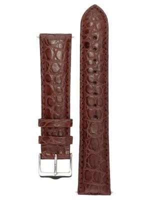 Ремешок для часов из кожи луизианского аллигатора. Ширина от 18 до 24 мм Signature. Цвет: коричневый