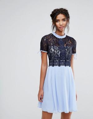 Elise Ryan Короткое приталенное платье с кружевным лифом. Цвет: мульти