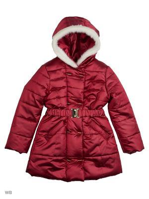 Пальто Senso kids. Цвет: бордовый