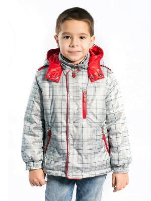 Куртка Матвей Аксарт. Цвет: серый