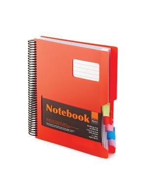 Бизнес-блокнот-1 а4-, 200 л. гр., разделители,пластиковая обл. ultimate basics, красный Альт. Цвет: красный