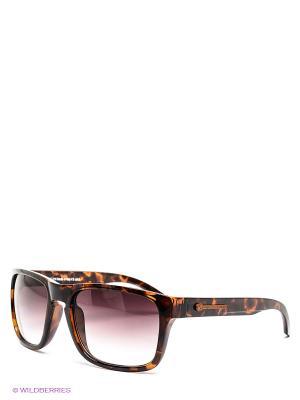 Солнцезащитные очки Franco Sordelli. Цвет: коричневый, черный