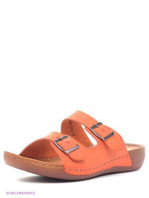 Пантолеты J&Elisabeth. Цвет: оранжевый