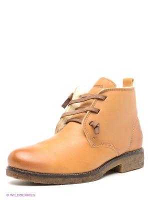 Ботинки El Tempo. Цвет: рыжий